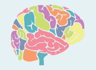 Как перепрограммировать мозг, чтобы сфокусироваться на своих целях